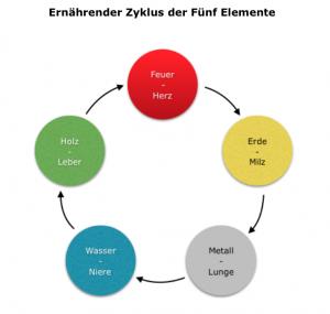 Ernaehrender Zyklus der 5 Elemente